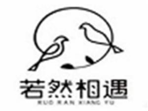 必普电子商务集团股份有限公司logo图